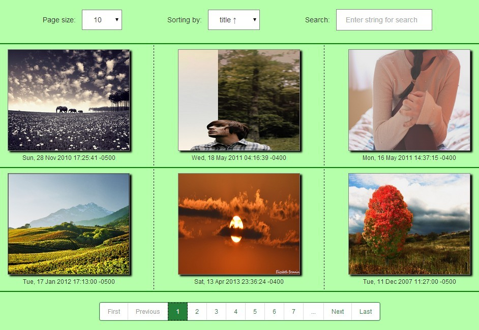 Reusable & Extensible AngularJS Gallery Application