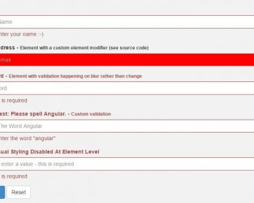 Dynamic AngularJS Form Validation