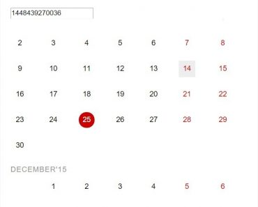 Nice and Simple Datepicker For AngularJS
